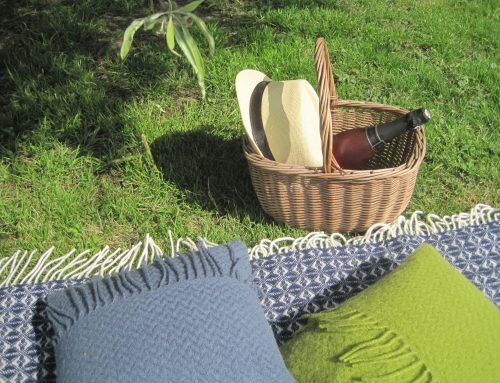Best UK Picnic Blanket Ideas